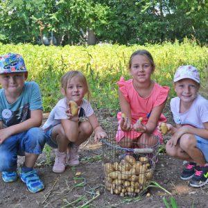 Kinder mit der eigenen Erdäpfelernte am Feld