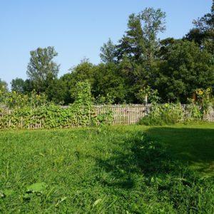 Hausgarten im Sommer