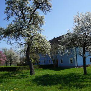Heidingerhof im Frühling