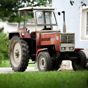 Traktor: alter Steyrer